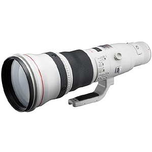 CANON EFレンズ EF800mm F5.6L IS USM[2746B001]