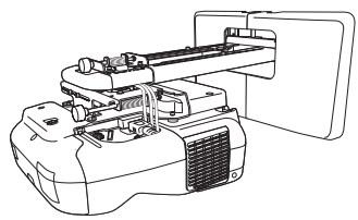 ELPMB43